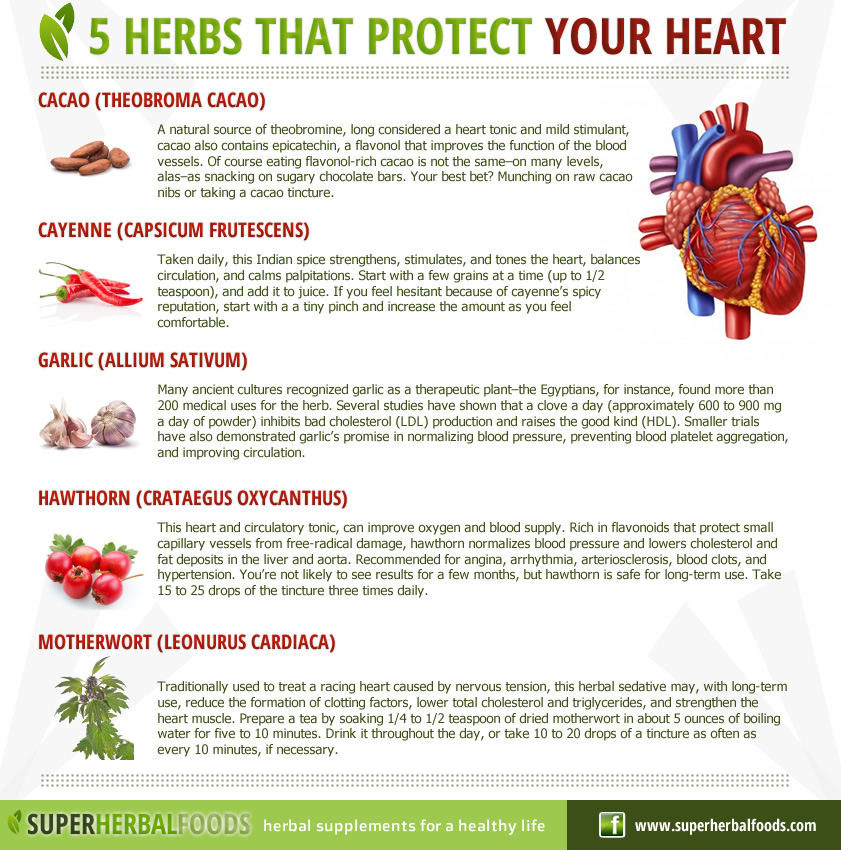 Super Herbal Foods – Natural Remedies - 5 Herbs that ...